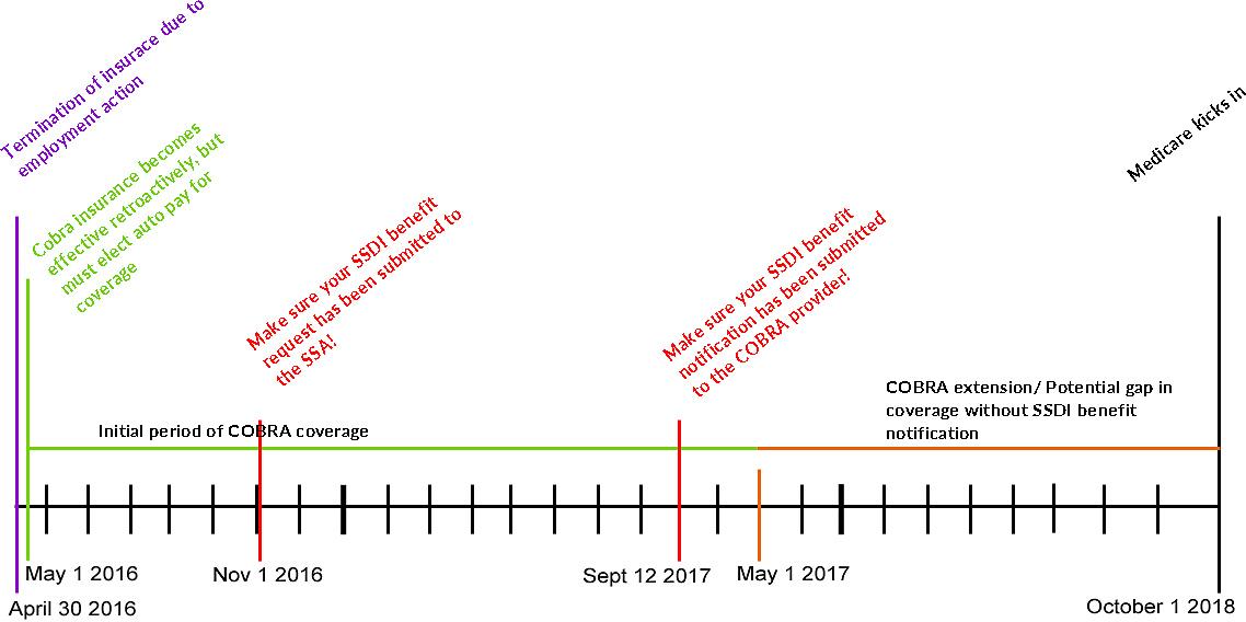 cobra-timeline