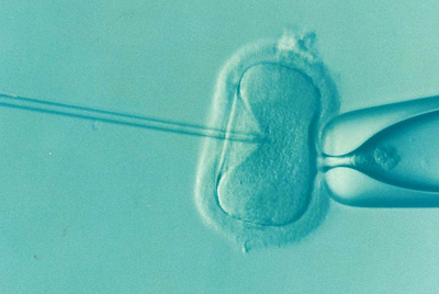 infertility and disability
