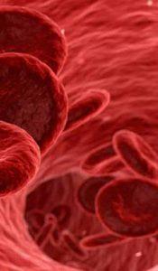 leukemia disability